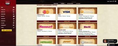 Red Stag Casino supports a wide variety of payment options